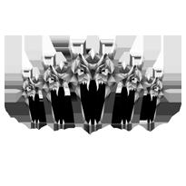 HydraForge